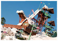 Disney's Blizzard Beach - Green Slope - Summit Plummet