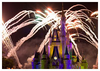 Disneys Magic Kingdom - Entertainment - Holiday Wishes