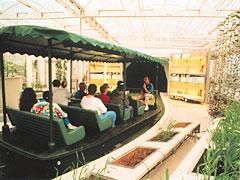 Walt Disney World et Universal Orlando en amoureux du 5 au 13 juin 2011 (update page 5) - Page 2 LivingLand
